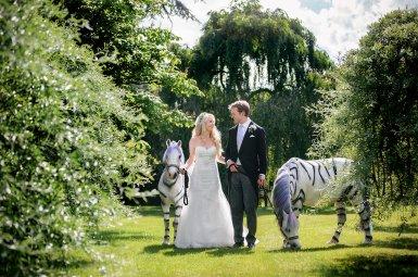 Sherbourne Wedding with Frankie & Richard